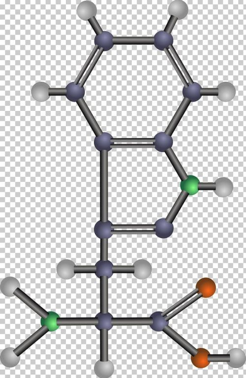 small resolution of essential amino acid tyrosine png clipart acid acid rain amino amino acid angle free png download