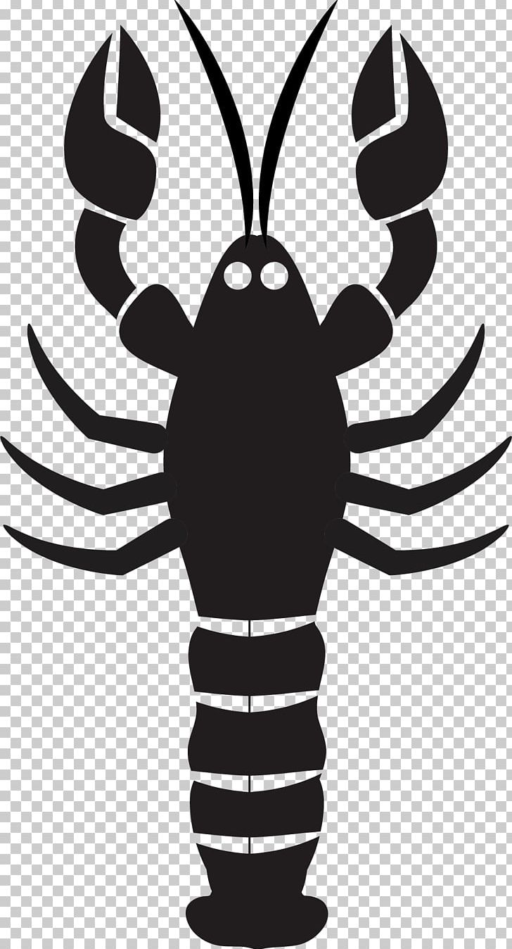 hight resolution of lobster mussel seafood png clipart american lobster black and white cartoon cartoon lobster drawing free png download