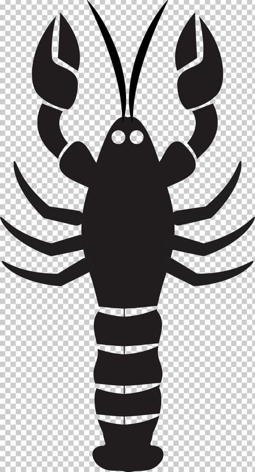 small resolution of lobster mussel seafood png clipart american lobster black and white cartoon cartoon lobster drawing free png download