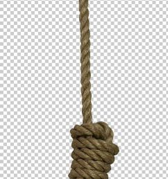 noose rope knot png clipart cartoon rope electrical cable free free stock png hanging free png download [ 728 x 1996 Pixel ]