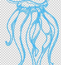jellyfish drawing sea png clipart area circle clip art drawing ink free png download [ 728 x 1308 Pixel ]