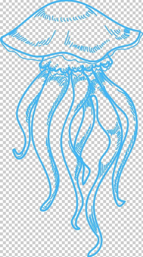 small resolution of jellyfish drawing sea png clipart area circle clip art drawing ink free png download
