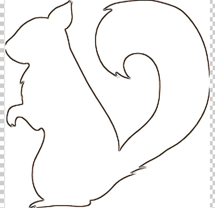 squirrel drawing template png