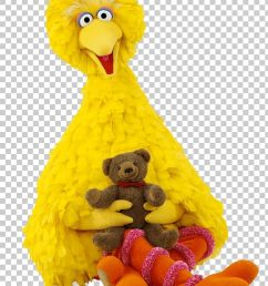 sesame street big bird with teddybear png clipart at the movies sesame street free png download [ 728 x 1107 Pixel ]