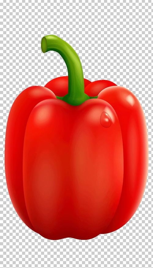 small resolution of acuminatum chili pepper yellow pepper paprika png clipart bell pepper bell peppers