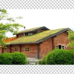 Green Roof House Garden Building Insulation PNG Clipart Alt Attribute Biodiversity Building Insulation Cottage Estate Free