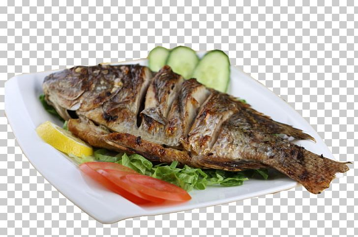 grilling fish as food
