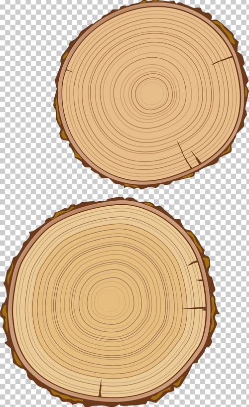 small resolution of wood grain material png clipart board broken old board circle dishware do not have free png download