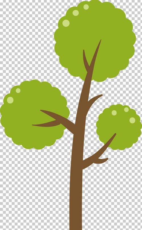 small resolution of green tree diagram png clipart backgro botany branch christmas tree diagram free png download