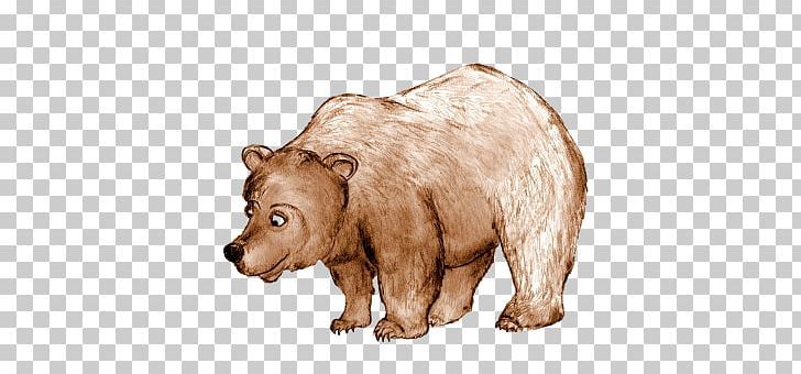 Grizzly Bear Brown Bear Bears Drawing Png Clipart Animal Animal Figure Animals Bear Bears Free Png