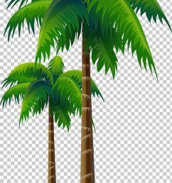 arecaceae coconut tree woody plant png clipart arecaceae arecales asian palmyra palm attalea attalea speciosa free  [ 728 x 1142 Pixel ]