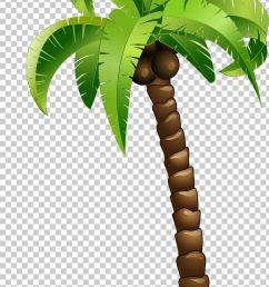 coconut tree png clipart arecales balloon cartoon cartoon cartoon couple cartoon eyes free png download [ 728 x 1420 Pixel ]