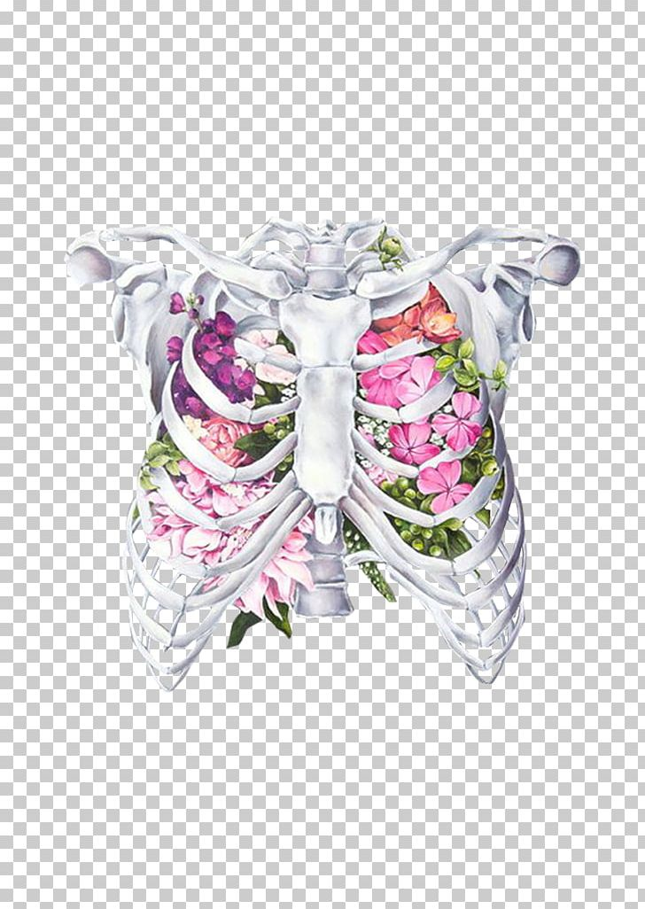 Rib Cage Drawing With Flowers : drawing, flowers, Anatomy, Flower, Human, Drawing, Clipart,, Artist,, Butterfly,, Creative, Background,, Graphics