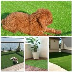 The 12 Best Artificial Grass For Indoor Outdoor Use Improb