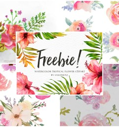 a collection of 280 free watercolor floral elements [ 1200 x 876 Pixel ]