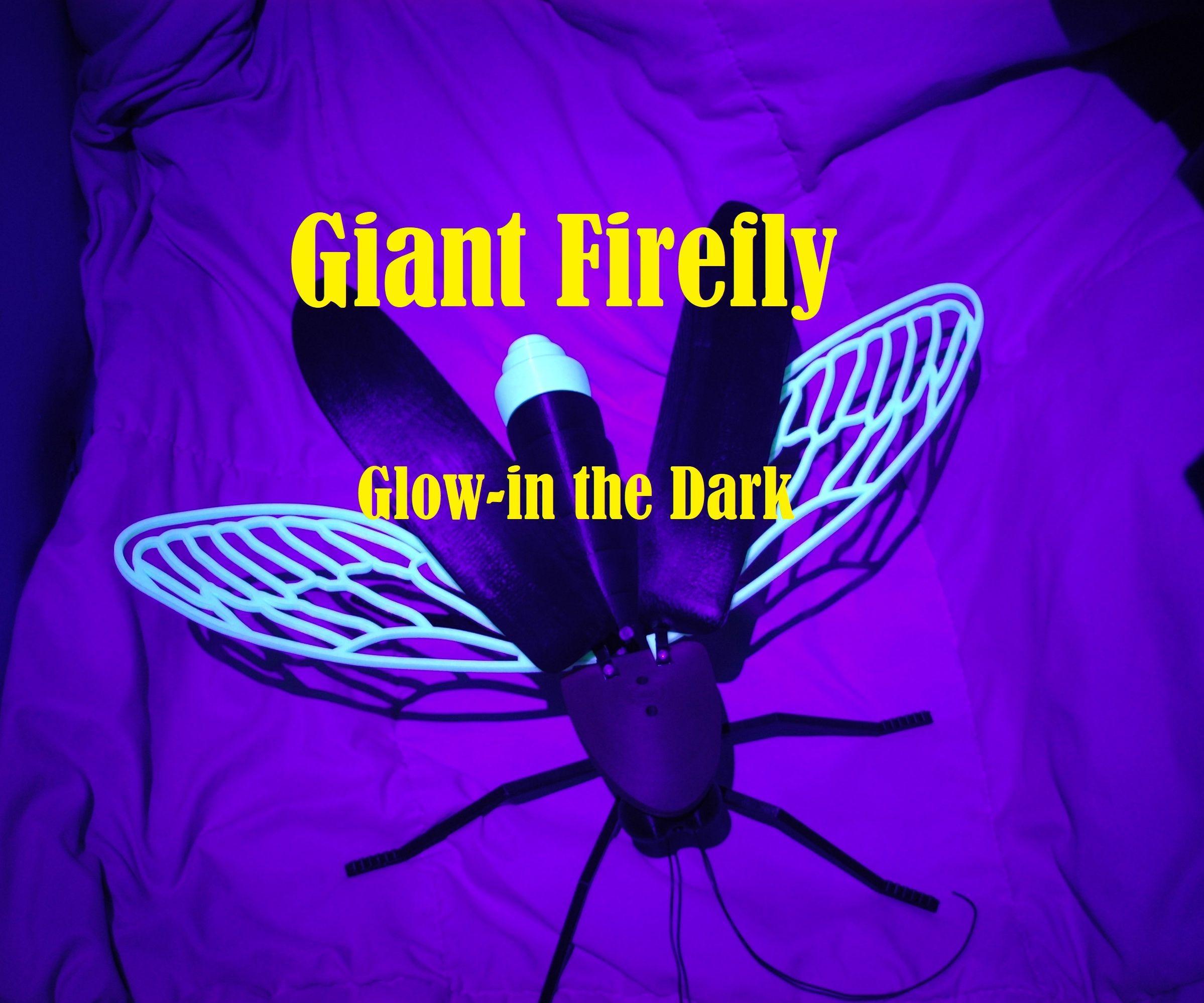easy diagram of firefly [ 2100 x 1750 Pixel ]