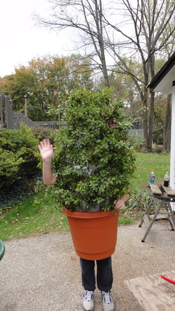 Shrub Bush Plant Costume 3 Steps