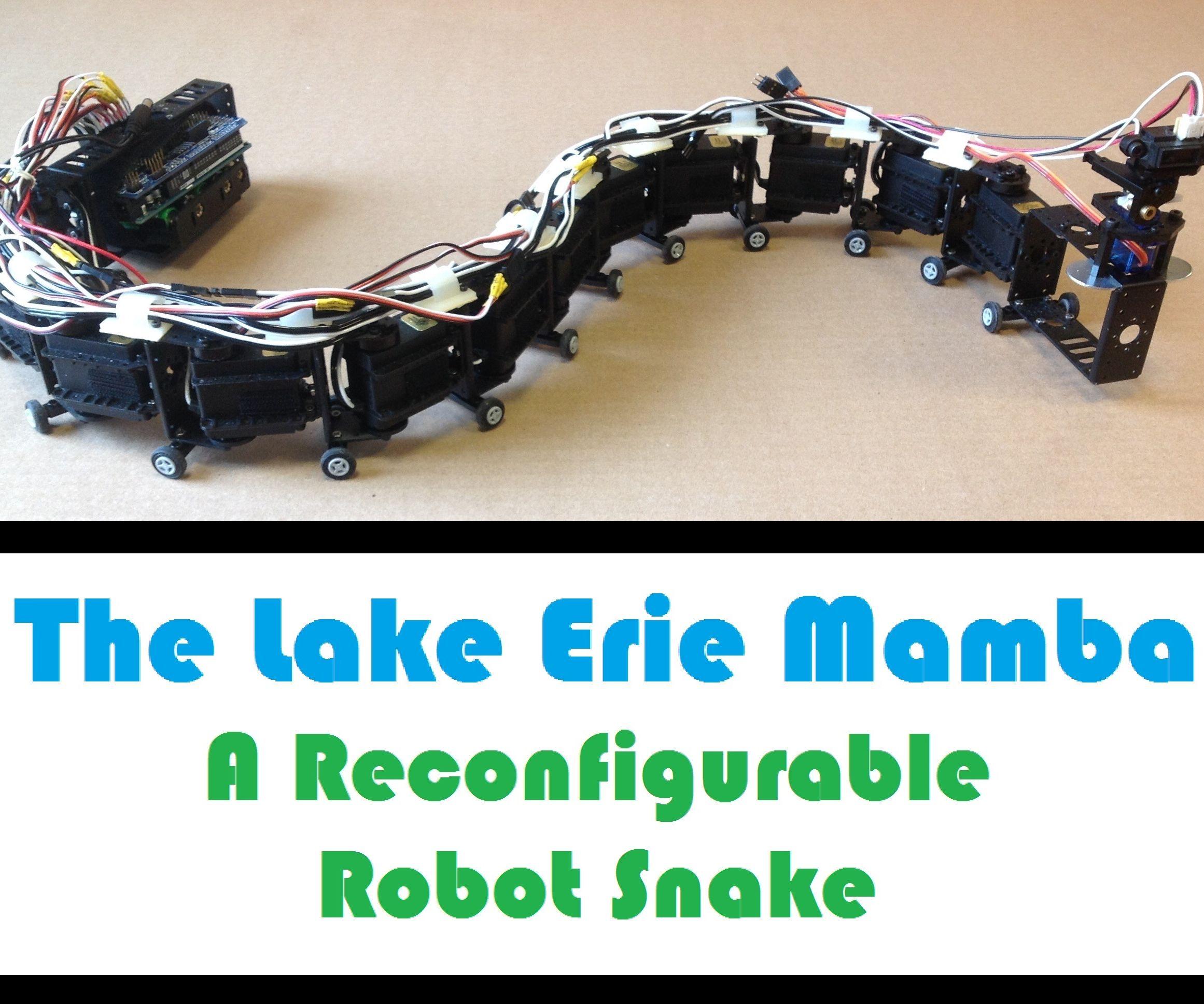 hight resolution of snake robot