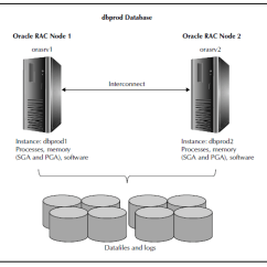 Oracle Database 11g Architecture Diagram With Explanation 96 Cherokee Wiring Real Application Clusters Rac Dba Tutorial Intellipaat Com Servers Share The Same On All Nodes