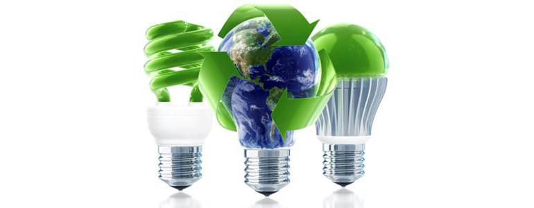 Lamps Light Bulbs