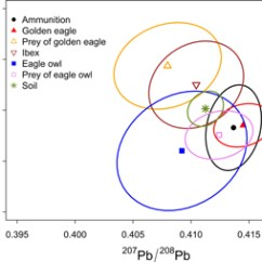 Golden Eagle Skeleton Diagram Toyota Engine Parts Excessive Lead Burden Among Eagles In The Swiss Alps Iopscience Figure 4