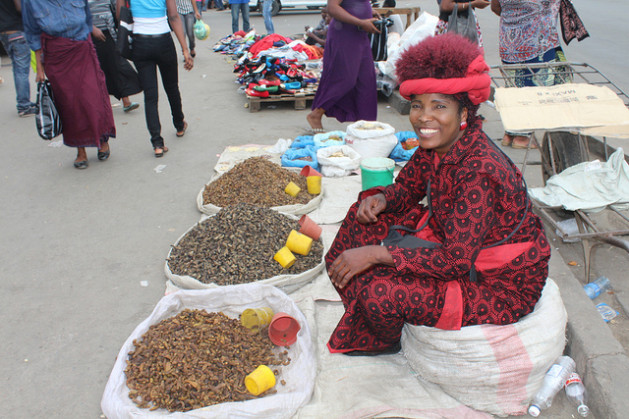 Zambian trader Dorothy Chisa sells caterpillars, a popular high-protein delicacy in the southern African country. Credit: Amy Fallon/IPS