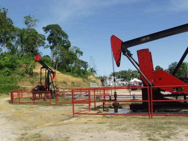 Petrotrin pumping jacks at its oilfields in Trinidad. Courtesy of Petrotrin.