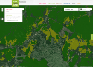 Brazil's Amazon forest - 2013. Credit_Courtesy of Global Forest Watch