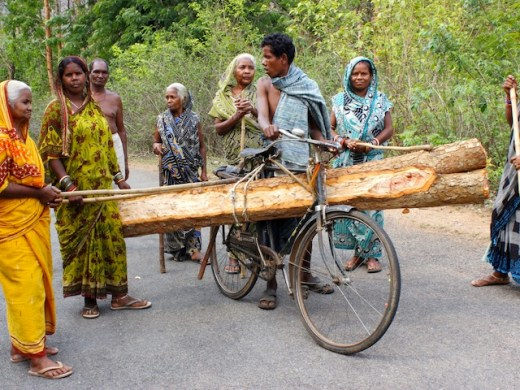 Women vigilantes apprehend a timber thief. Village councils strictly monitor the felling of trees in Odisha's forests, and permission to remove timber is only granted to families with urgent needs for housing material or funeral pyres. Credit: Manipadma Jena/IPS