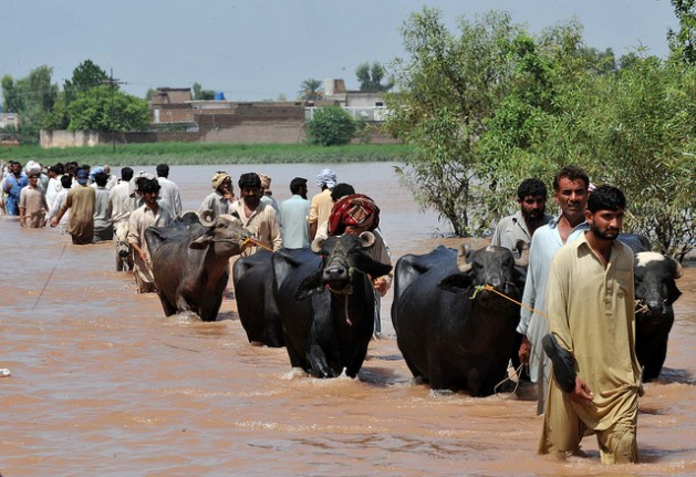 Displaced people fleeing Sindh streamed into Balochistan. Credit: Abdul Majeed Goraya/IRIN