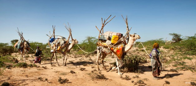 Land degradation - Sustainable land management: do nothing and you will be poorer. Credit: UNEP