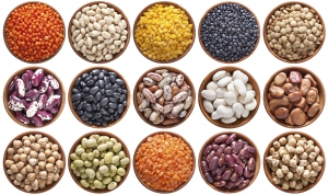A key message of the 2016 International Year of Pulses is that pulses are highly nutritious—the little seeds are packed with nutrients, and are a fantastic source of protein. Photo: Courtesy of FAO