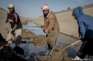 Workers cleaning up the main Al Jazeera irrigation canal as part of a project to resupply water for agricultural production in Iraq. Credit: FAO