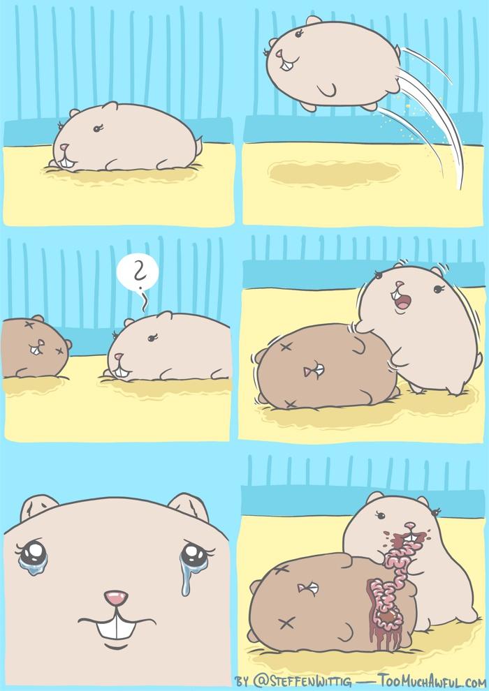 just hamster things