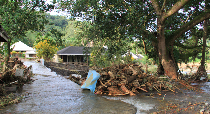 Floodwaters Deposited These Log At The Emerald Valley Casino In Penniston. (Iwn Photo)