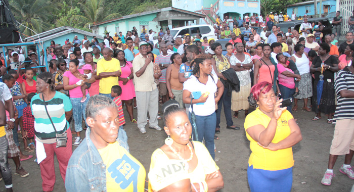 A Section Of The Crowd At The Ndp'S Rally In Sandy Bay On Aug. 2. (Iwn Photo)