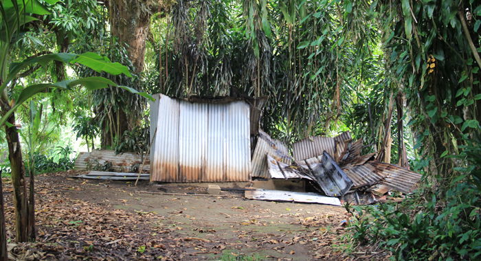 The Burnt0Out Packing Shed On Stewart'S Farm. (Iwn Photo)