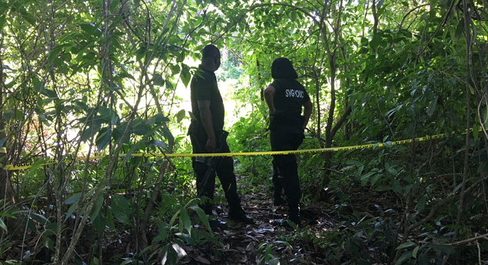 Kevin Jackson Murder Scene