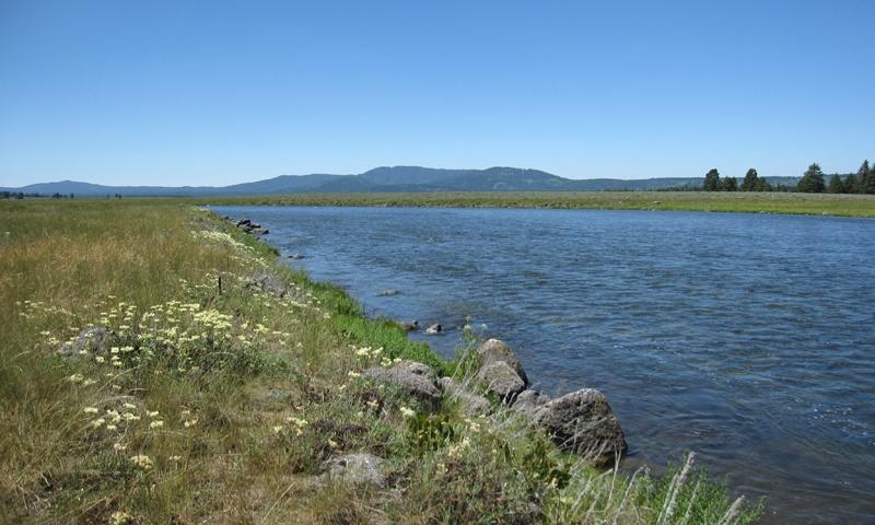 Henrys Fork Snake River Idaho Fly Fishing Camping