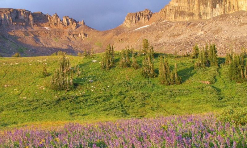 Grand Alaska National Park Teton Elevation Basin