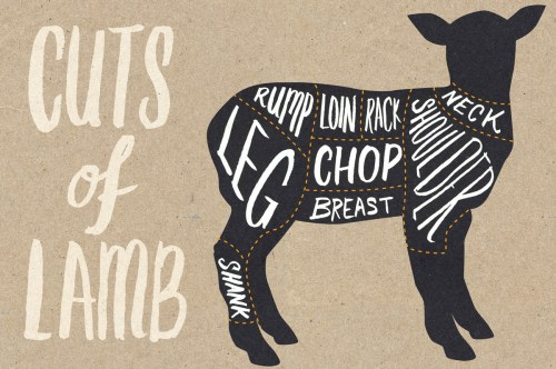 small resolution of the ultimate guide to lamb cuts