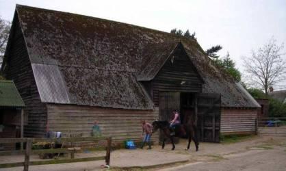 Medieval Home Decor Horse Gothic Design House Plans #45489
