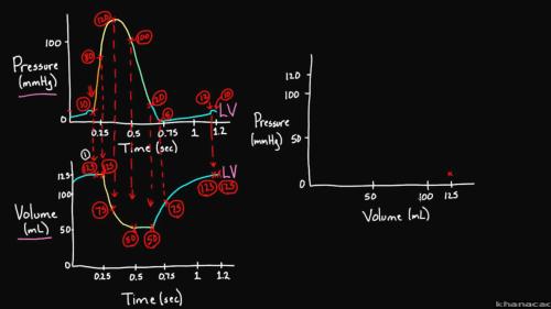 small resolution of isovolumetric pv line diagram