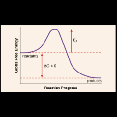 How To Make An Energy Level Diagram Ph Scale Activation Article Enzymes Khan Academy