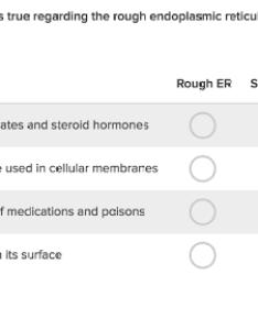 also the endomembrane system article khan academy rh khanacademy