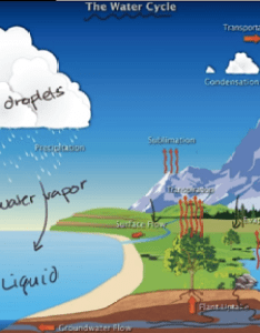 Current time total duration also the water cycle video ecology khan academy rh khanacademy