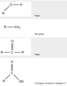also functional groups carbon biology article khan academy rh khanacademy