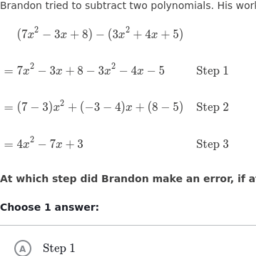 arithmetic with polynomials and