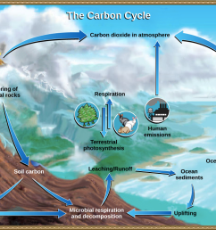 the diagram below show the water cycle [ 1117 x 778 Pixel ]