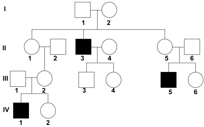 Human pedigree analysis problem sheet